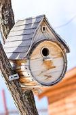 Birdhouse for the birds — Stock Photo