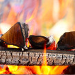 Firewood burning in the brazier — Stock Photo #46602669
