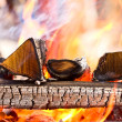Firewood burning in the brazier — Stock Photo #47691241