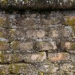Very old brick wall covered with moss, texture — Stock Photo