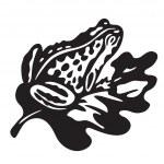 Black frog - vector illustration — Stock Vector