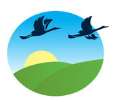 Birds flying over the green fields - vector illustration — Stock Vector