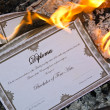Stock Photo: Burning Diploma