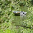 Stock Photo: Partially Hidden Boat on Secluded Lake