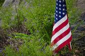 American Flag — Zdjęcie stockowe