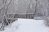 Winter Bridge after a Fresh Snowfall — Stock Photo