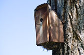 Overstuffed and Overflowing Birdhouse — Stock Photo