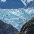 Detail of glacier in Alaska behind the rocks.  — Stock Photo