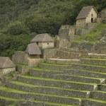 Ruins inside Machu Picchu, Peru — Stock Photo