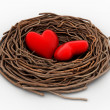 Two red heart in a bird nest — Stock Photo #46390109