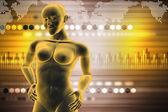 Woman female human body — Stock fotografie