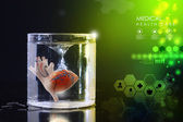 Heart in glass of water — Stock Photo