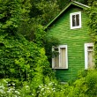 Green cottage — Stock Photo