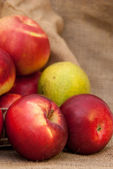 Red apples and one pear on sackcloth background — Stock Photo