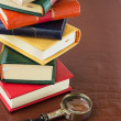 Stack of books. — Stock Photo #48764317