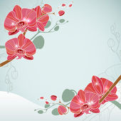 Corner floral background with orchid — Stock Vector