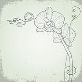 Sfondo grunge floreale con orchidea — Vector de stock