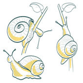 Set of three snails — Stock Vector