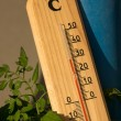 Summer temperature — Stock Photo
