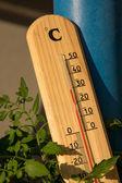 Summer temperature — Stock Photo