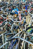 Numerous bicycles in parking area — Foto de Stock