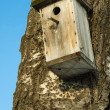 Empty nesting box — Stock Photo
