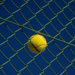 Ball in Fence — Stock Photo