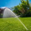 Irrigation of the park lawn — ストック写真