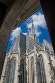 Cathedral Perspective — Stock Photo