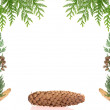Christmas framework with spruce isolated on white background — Stock Photo