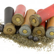 Shotgun shells on white background — Stock Photo
