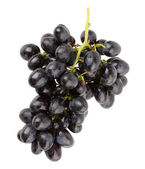 Branch of grapes on white background — Stok fotoğraf