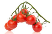 Ripe tomatoes on white background — Stock Photo