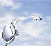 Splash of white wine on the sky background — Stock Photo