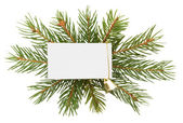 Christmas decoration with white card isolated on white backgroun — Zdjęcie stockowe
