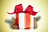Gift box, tree branch, cone — Stock Photo
