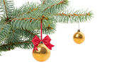 Fir tree with ball isolated on white — Fotografia Stock