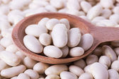 Spoon beans on white background — Stock Photo