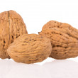 Stock Photo: Walnuts on a white background