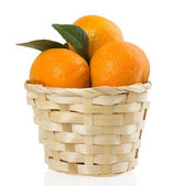 Mandarins in basket on a white background — Stock Photo
