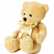 Teddy bear toy on the white background — Stock Photo