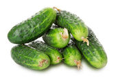Cucumbers on the white background — Stok fotoğraf