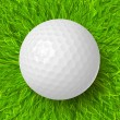 Golf ball on grass — Stock Vector