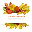 Autumn border — Stock Vector