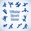 Winter sports icons set — Stock Vector #37340129