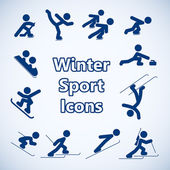 Winter sports icons set — Stock Vector