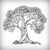 Hand drawn tree symbol — Stock Vector