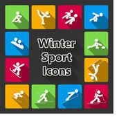 Winter sports iconset — Stock Vector