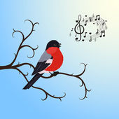 Singing bullfinch bird on a tree branch — Stock Vector