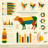 Animal husbandry infographics flat design elements — Stock Vector